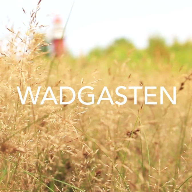 Wadgasten